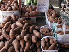LOCAL SWEET POTATOES
